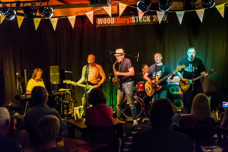 Blues festival held at Woodbury in aid of Force Cancer Charity